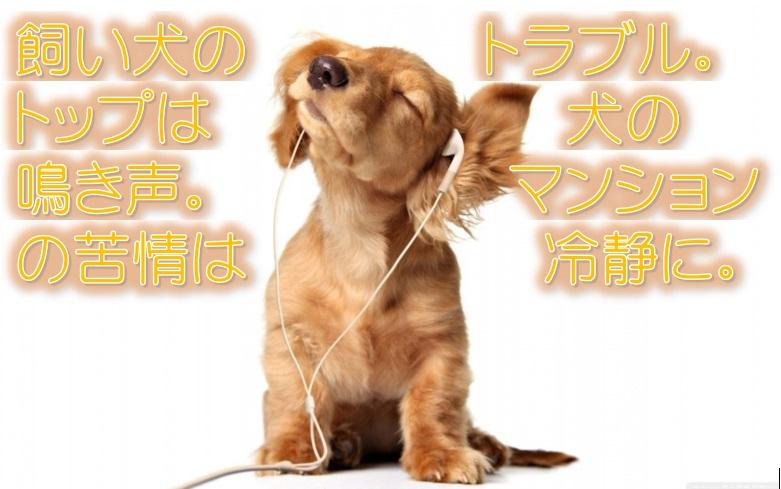 飼い犬のトラブル。トップは犬の鳴き声。マンションの苦情は冷静に。