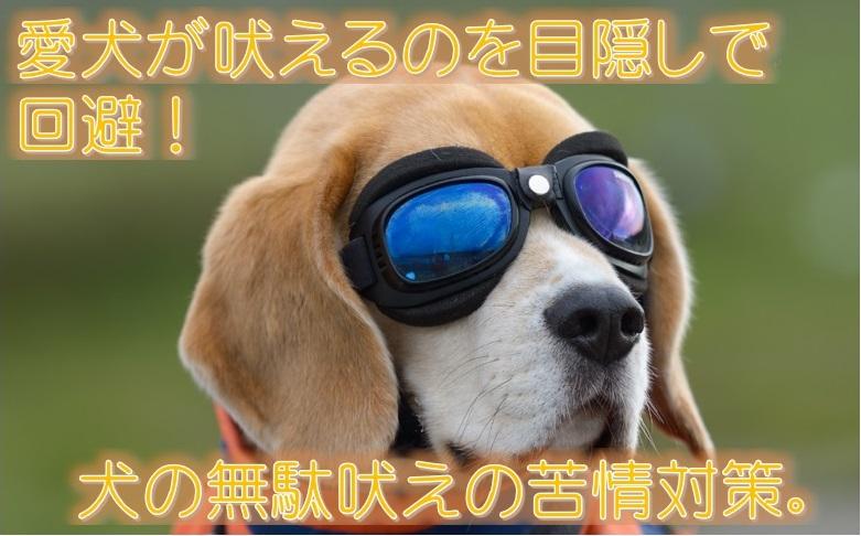 愛犬が吠えるのを目隠しで回避!犬の無駄吠えの苦情対策。
